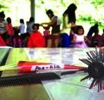 Hair Care (Skills Development)